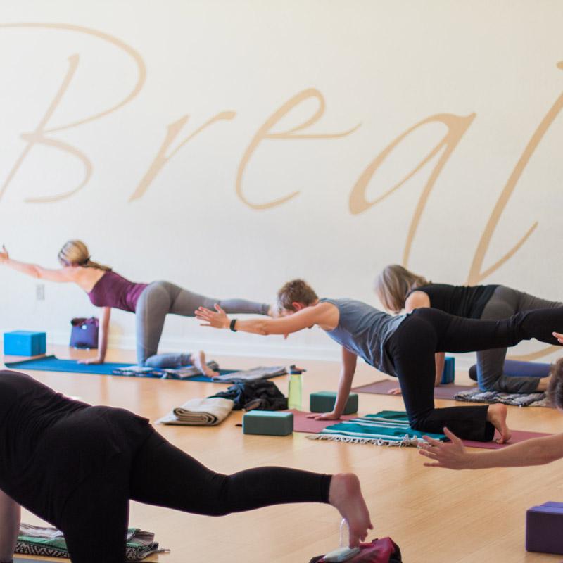 the basics of yoga essay